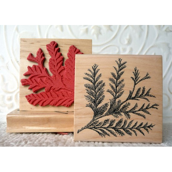 Cedar Bough Rubber Stamp