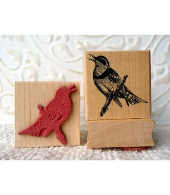 Varied Thrush Bird Rubber Stamp