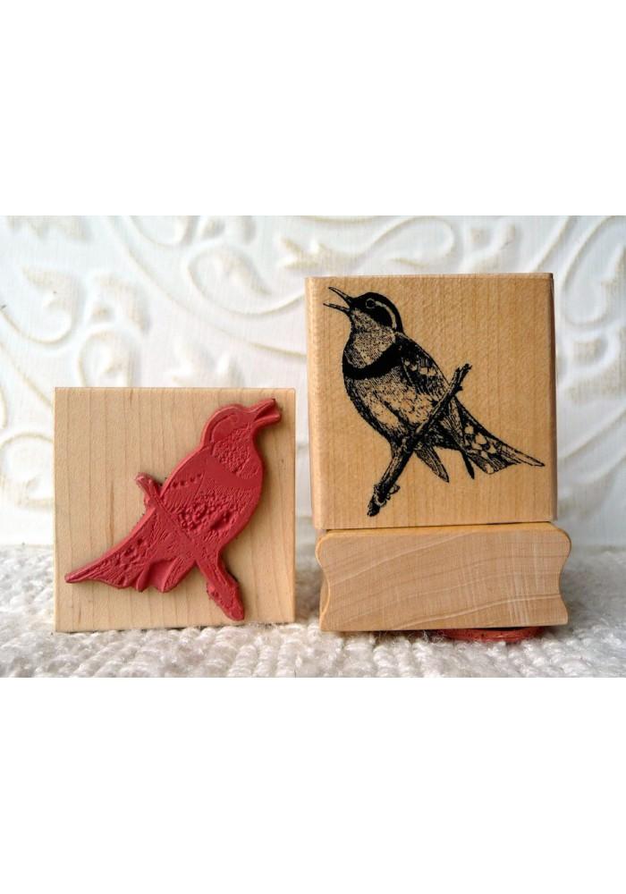 Varied Thrush Bird Rubber Stamp
