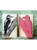 Hairy Woodpecker Bird Rubber Stamp