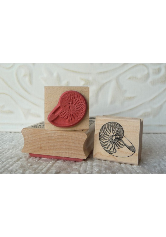 Nautilus Shell Rubber Stamp