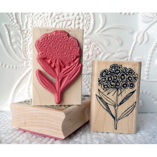 Sweet William Flower Rubber Stamp