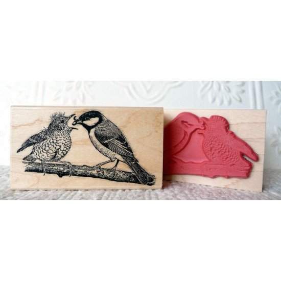Baby Robin Feeding Rubber Stamp