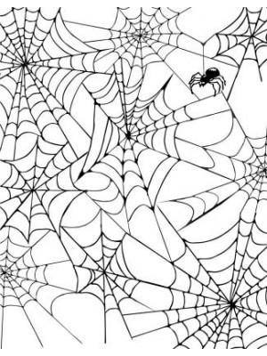 Spider Web Background Rubber Stamp