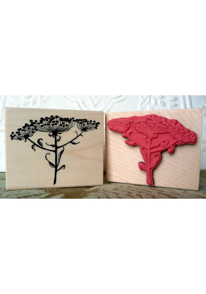 Cow Parsley Flowers Rubber Stamp
