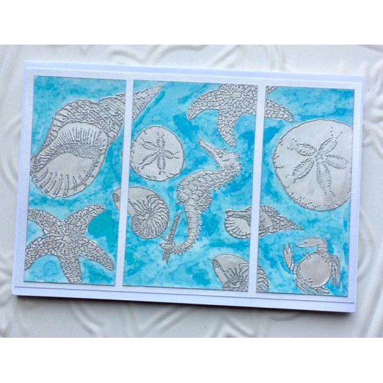 Sand Dollar Rubber Stamp