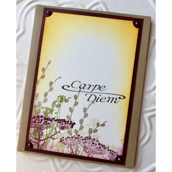 Carpe Diem Rubber Stamp